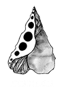 Punta de Flecha – Viticultura Logo